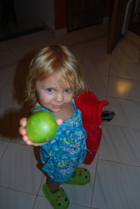 Eva's lime